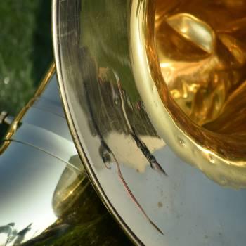Tuba Lessons Blue Mountains