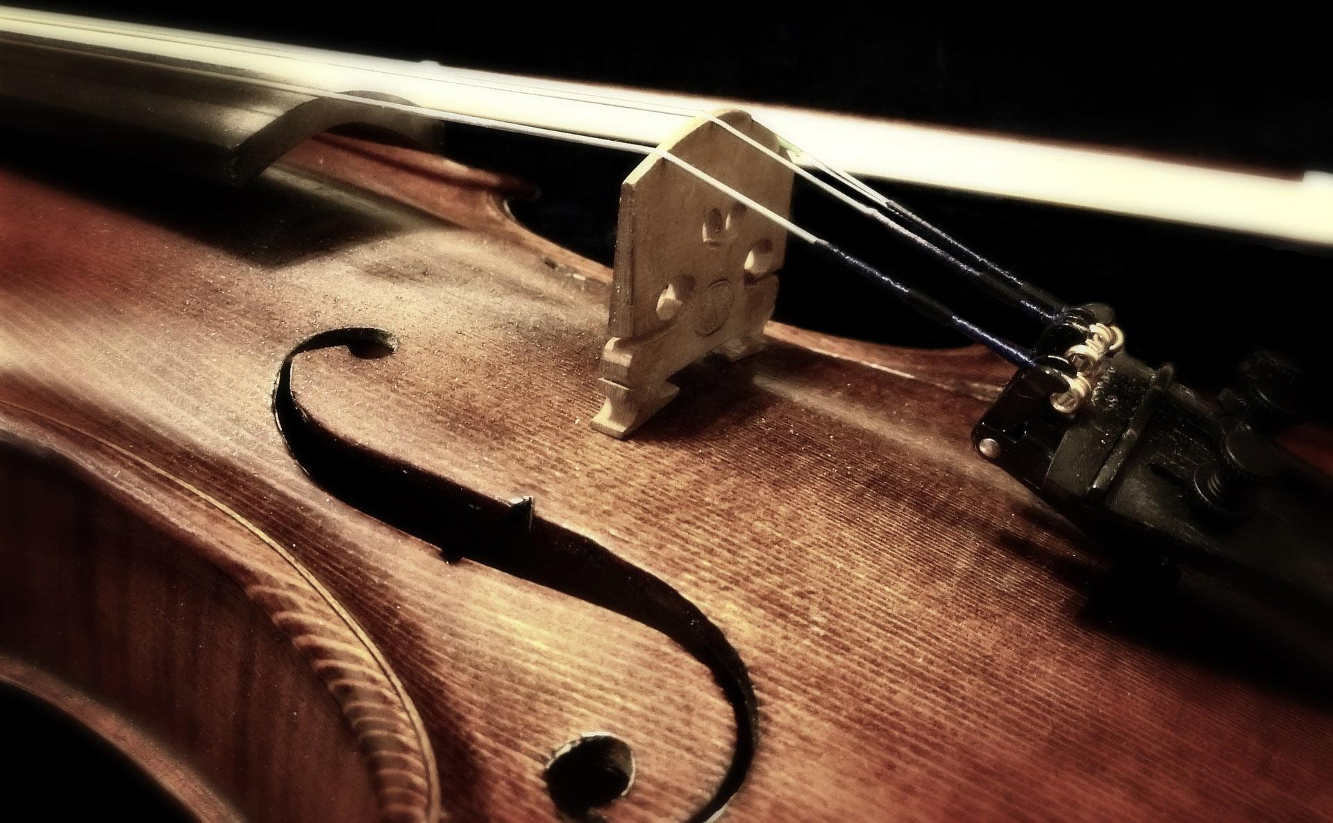 Violin Tutor Blue Mountains